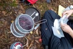 Utomhusmatlagning av egenplockade blåbär