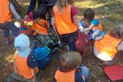 Matsäcksdags i skogen